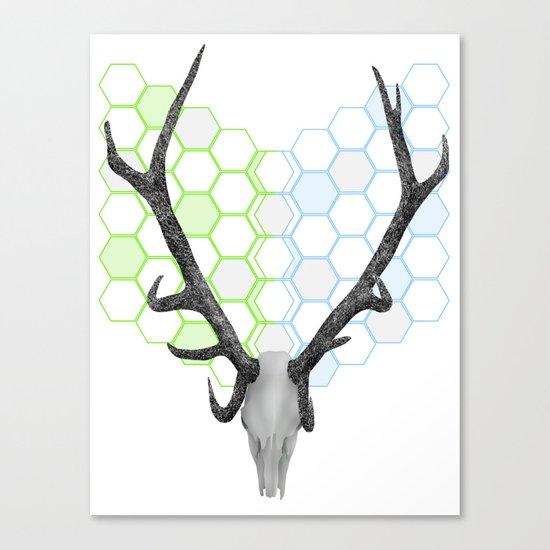Stag Skull Canvas Print
