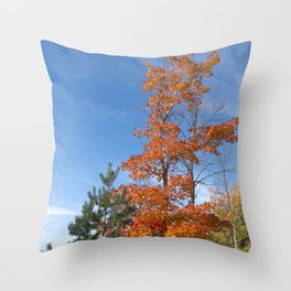 North Country Autumn Throw Pillow