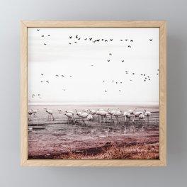 Nature and magic #04 Framed Mini Art Print