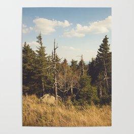 Brocken Mountain Trail Poster