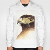 eagle Hoodies featuring eagle by Alessandra Razzi Illustrazioni