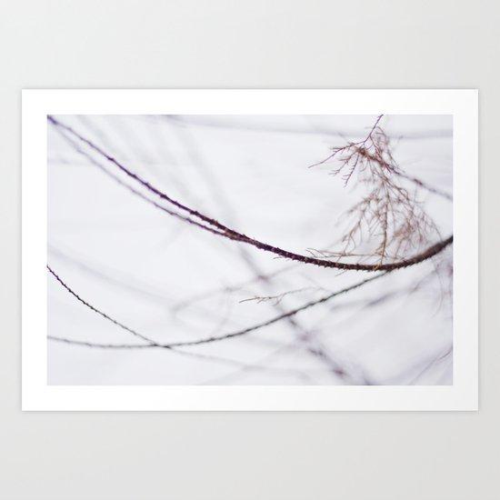 Winter Minimalism  Art Print