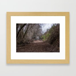San Joaquin forest trail Framed Art Print