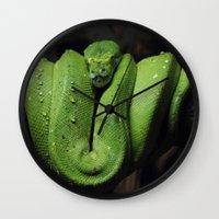 monty python Wall Clocks featuring Emerald Python by C Beth Holtzman