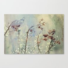 botanical dream Canvas Print