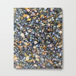 Sea Shells Low tide Metal Print