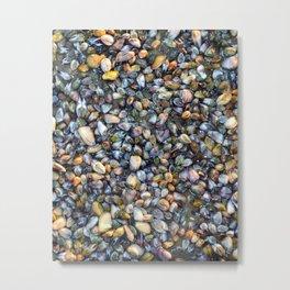 Sea Shells Low tide Metal Print