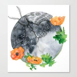 Moth & Moon Canvas Print