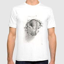 Pickaboo! T-shirt