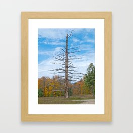 North Country Byway Framed Art Print
