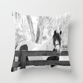 Gypsy Vanner Beauty Throw Pillow