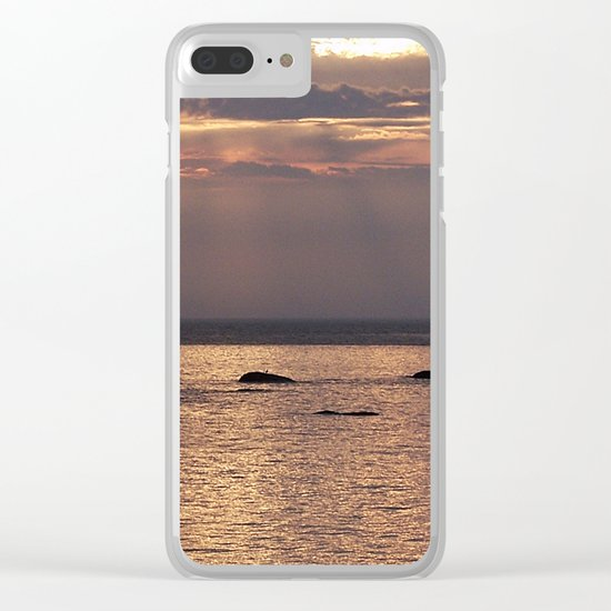 Circle of Rocks Light From Above Clear iPhone Case