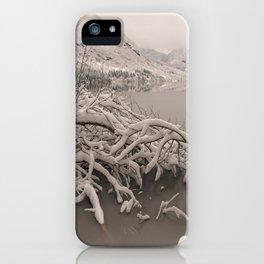 Frozen Lake Bohinj iPhone Case