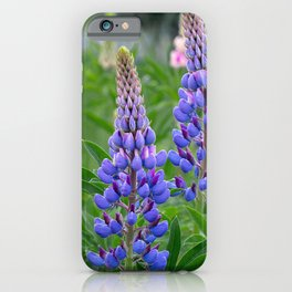 Lupine iPhone Case