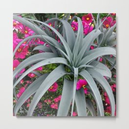 GRACEFUL ARCHING GREY-FUCHSIA FLORAL GARDEN PLANT Metal Print