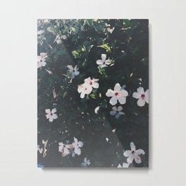 Flowers in the Summer Metal Print