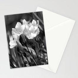 Flowerage Stationery Cards
