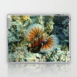 Lionfish at Ha'atafu Beach Laptop & iPad Skin