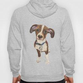 Cute Terrier Mix Hoody