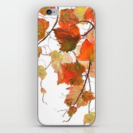orange grapevine 2 iPhone Skin