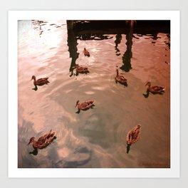 Just Duckies Art Print