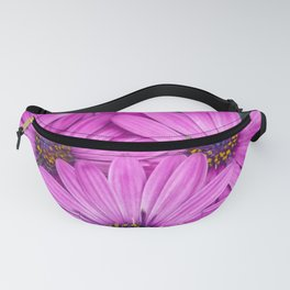 Cape Daisy's - Purple Fanny Pack