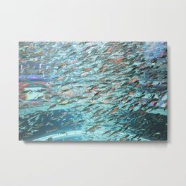 Typhoon Fish Metal Print