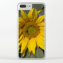 Lively Sunflower Clear iPhone Case