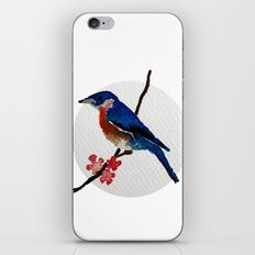 Messenger 003 iPhone & iPod Skin