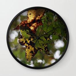 Fall Leaves in North Carolina Wall Clock