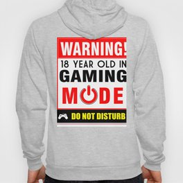 18 Year Old in Gaming Mode Video Game Gamer Hoody