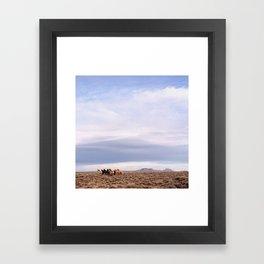 Last of the Broom Tails Framed Art Print