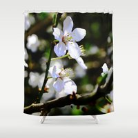 cherry blossoms Shower Curtains featuring Cherry blossoms by Monica Georg-Buller