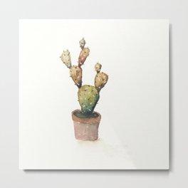 Brownish Green Cactus Metal Print