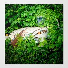 Abandoned Beetle Canvas Print
