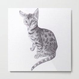 Bengal Cat Drawing Metal Print
