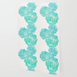 Rosette Succulents – Turquoise Palette Wallpaper