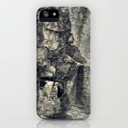 Lyme iPhone Case