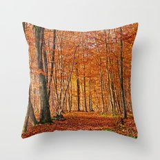 Autumn in the forest Throw Pillow