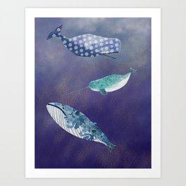 Watercolor marine mammals  Art Print