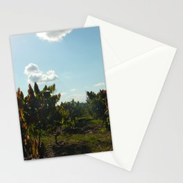 Cacao Fields Stationery Cards