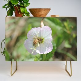 Bees and Buttercups Credenza