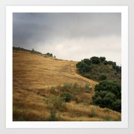 Field and sky, Spain Art Print