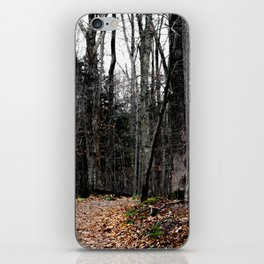 Chasing Autumn iPhone Skin