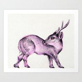 Hog Deer Art Print