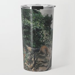 There are no ordinary cats Travel Mug