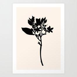 Lovely branch Art Print