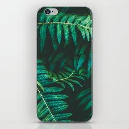 Ferns II iPhone Skin