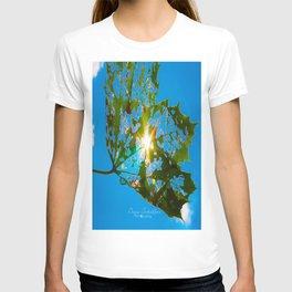 Let Your Light Shine Through T-shirt