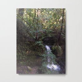 INTO THE WILD VII Metal Print